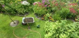 Jak przygotować ogród na sezon wiosenny?