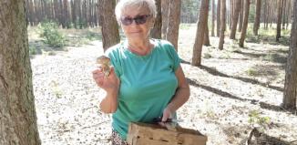 Szlichtyngowa: Grzybobranie w Klubie Senior + (ZDJĘCIA)