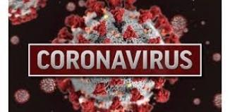 Raport o koronawirusie z woj. lubuskiego